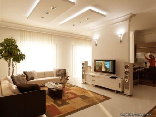 Salon avec télévision 1