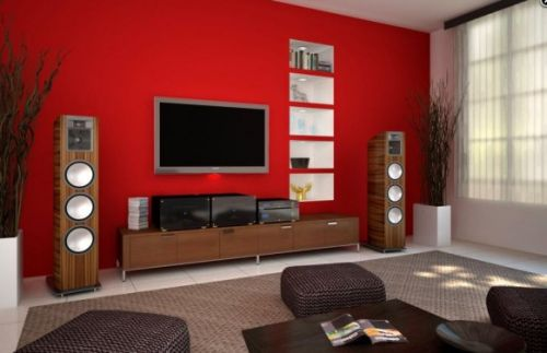 Salon avec télévision 6