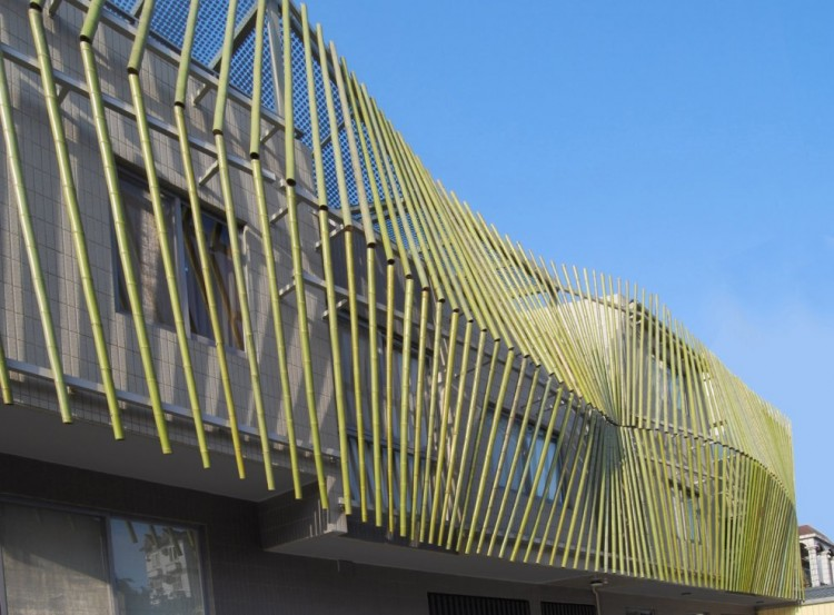 maison_bamboo_forest_3