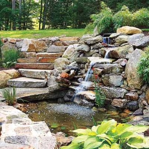 idee-bassin-jardin-12