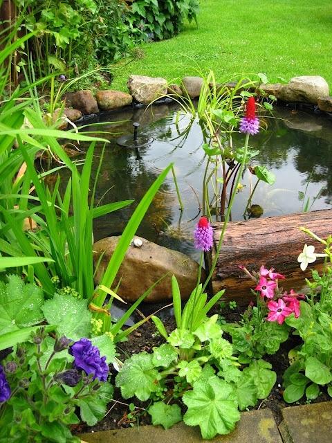 idee-bassin-jardin-20