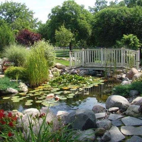 50 photos de bassin de jardin dans tous les styles for Jardin 42