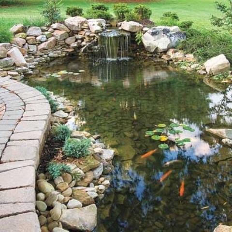 idee-bassin-jardin-44