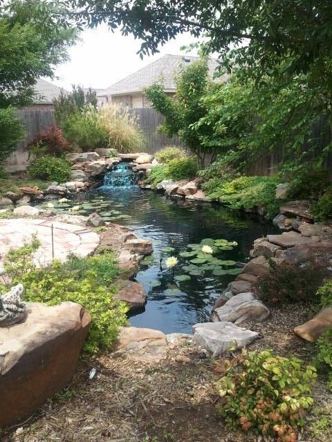 photo d'un grand bassin en eau avec petite cascade