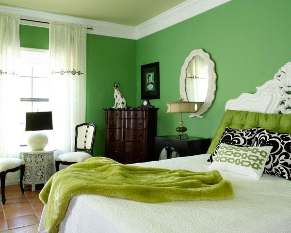 chambres de style traditionnel décorée en vert