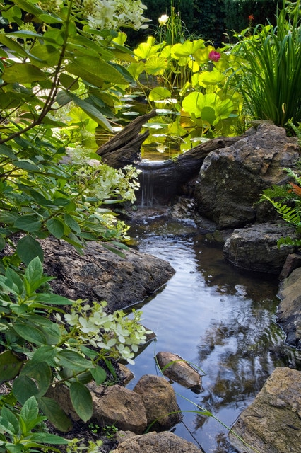 idee-jardin-relaxant-cascade-19