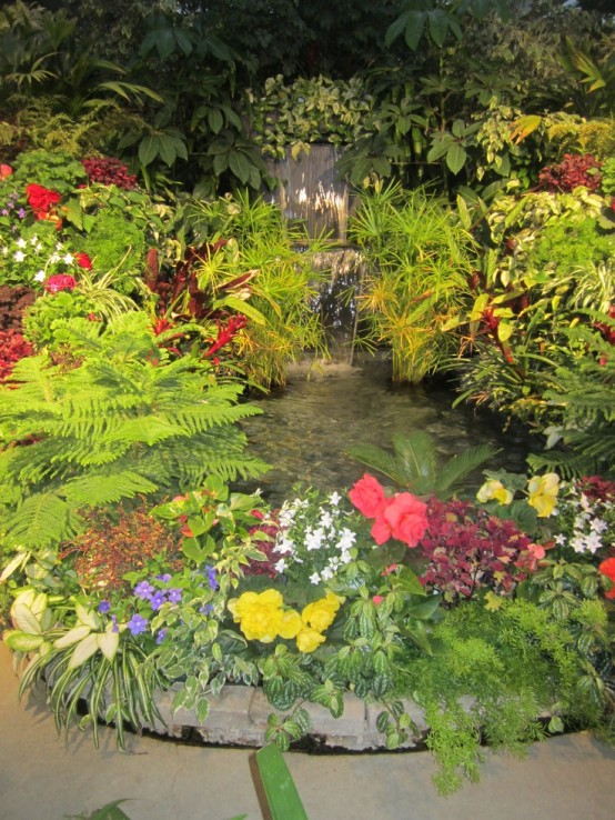 bassin avec cascade et végétation