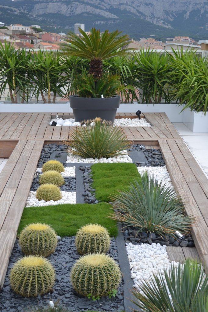 idée 2020 pour la terrasse avec cactus et graviers.